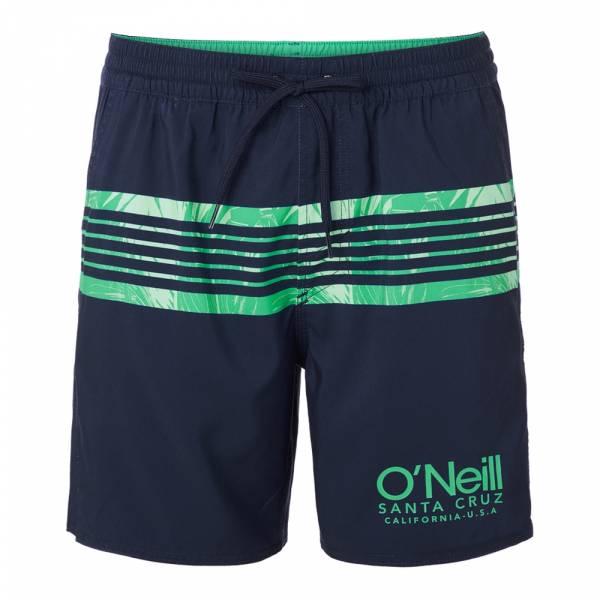 O'Neill Cali Stripe Shorts